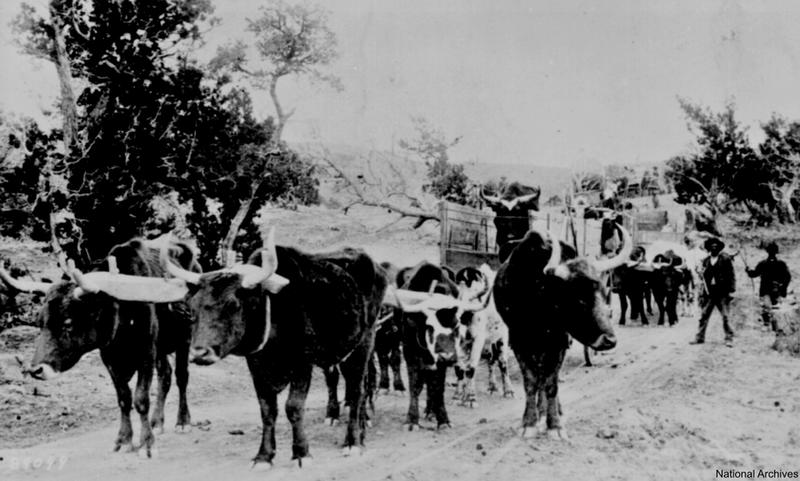 vintage old west photos 20