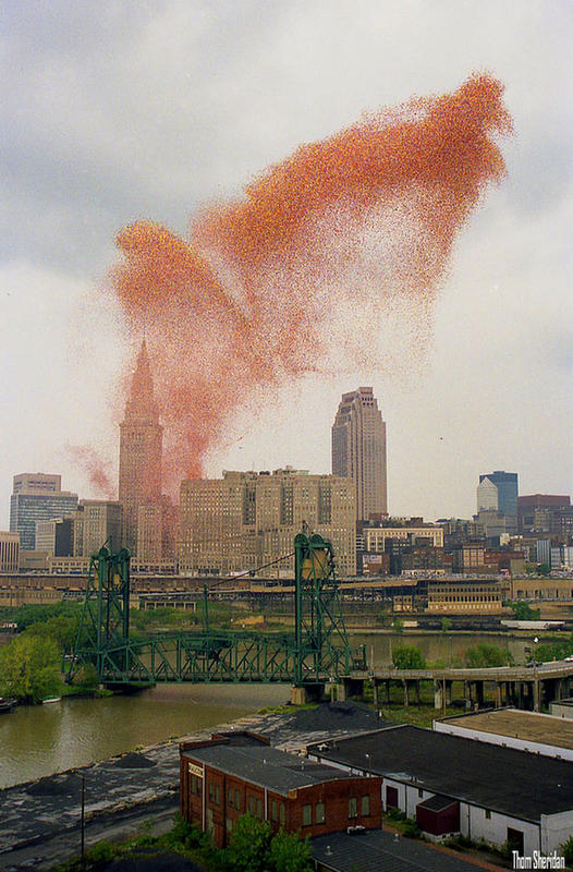 cleveland-balloons-4