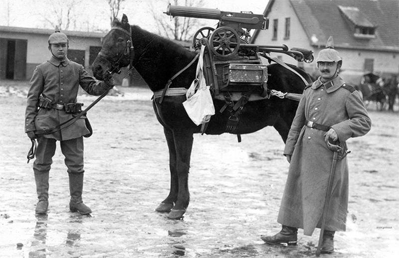 ww1-animals-3