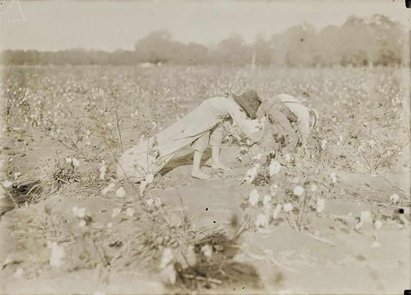 Cotton-Workers-6