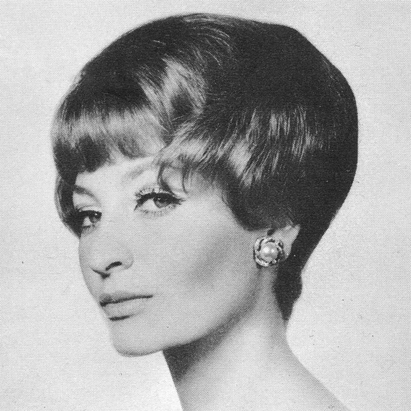 1960s Hairstyle 2