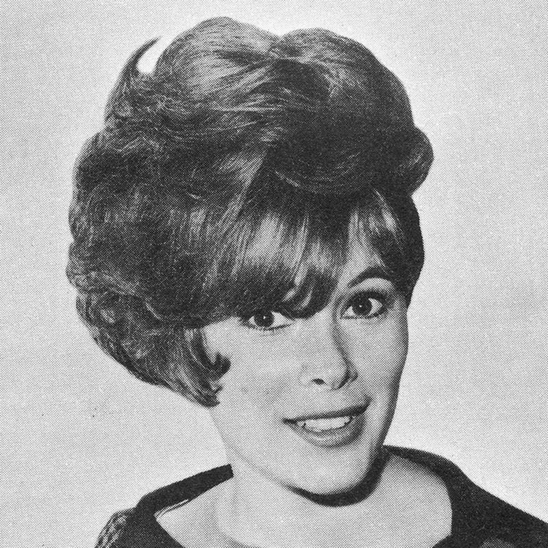 1960s Hairstyle 34