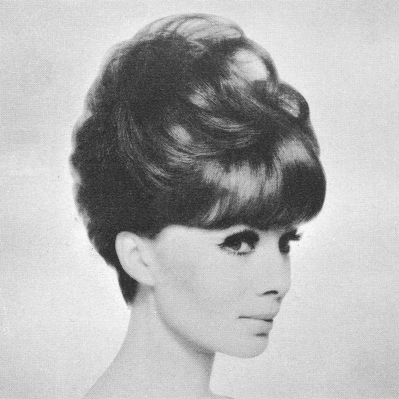 1960s Hairstyle 39