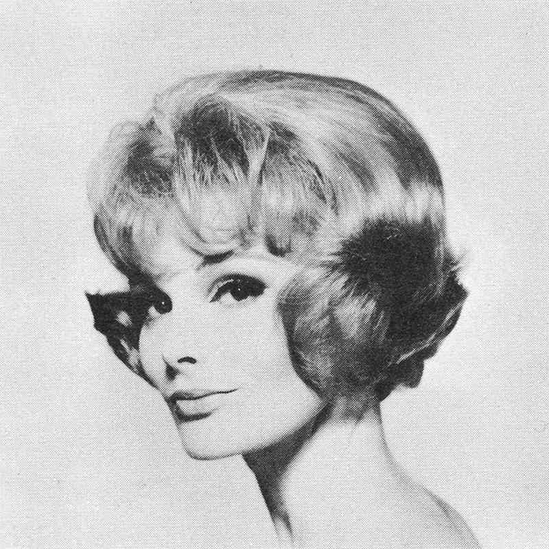 1960s Hairstyle 27