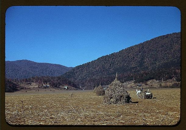 rare color photos - 1940s (13)