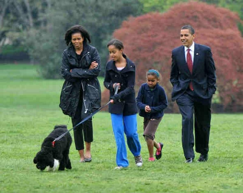 presidential-dogs-11