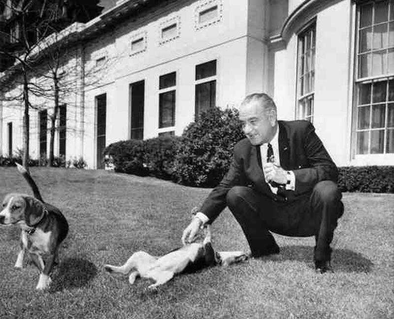 presidential-dogs-7