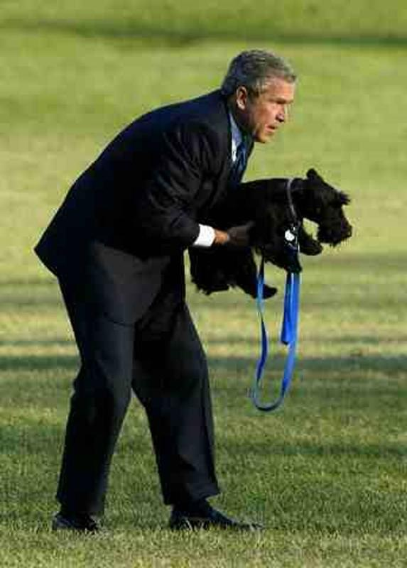 presidential-dogs-8