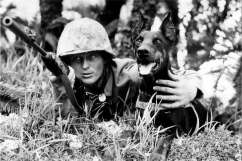 cappy and the devil dogs of the marine corps history daily history daily