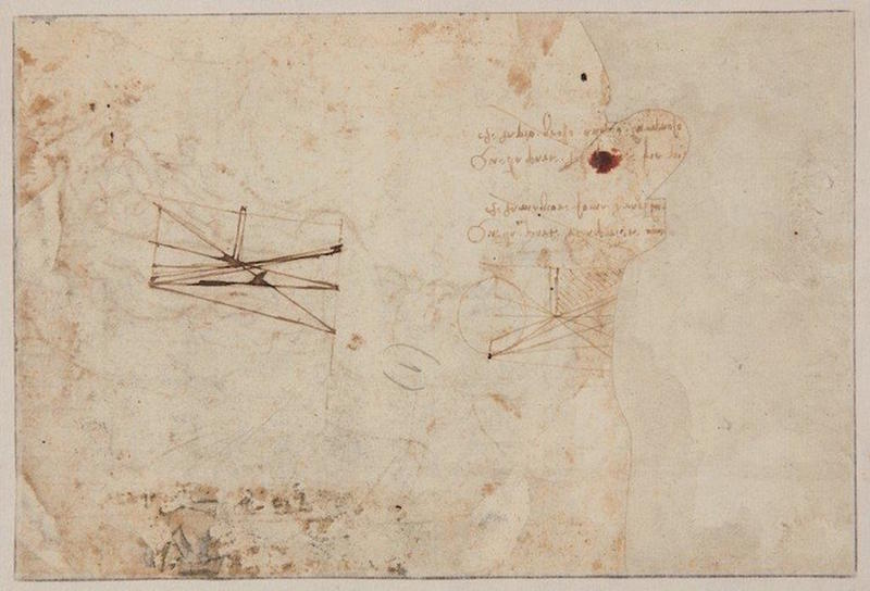 Leonardo da Vinci Drawing 3