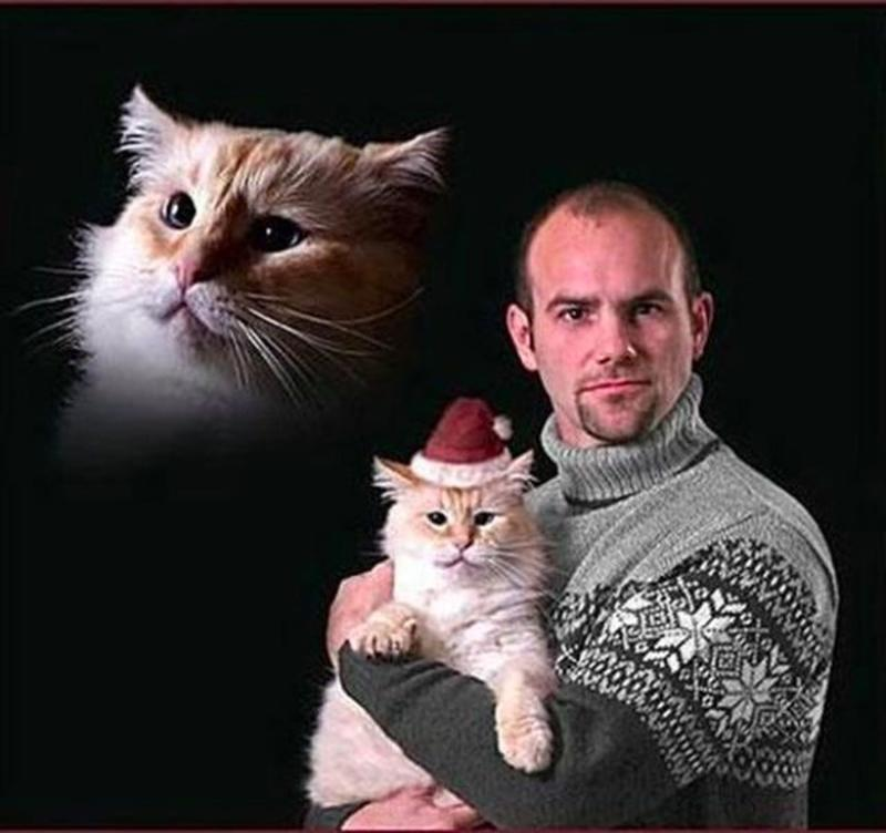 Men Posing With Their Cats 14