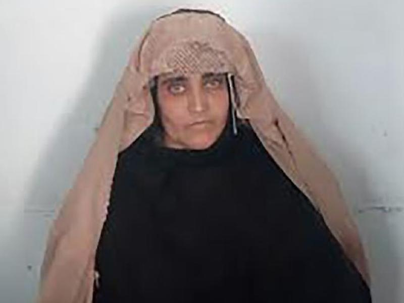 Afghan Girl' from Iconic National Geographic Photo Arrested