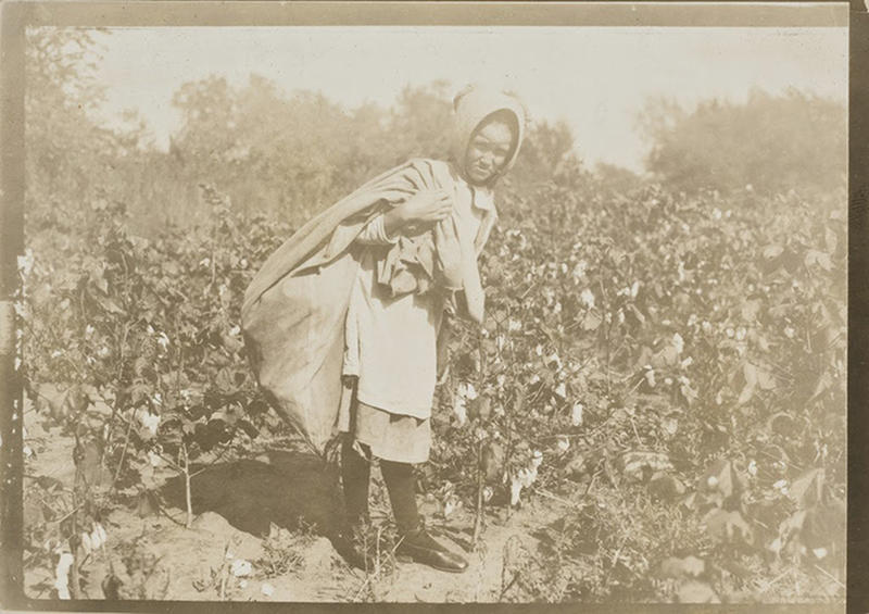 Cotton-Workers-13