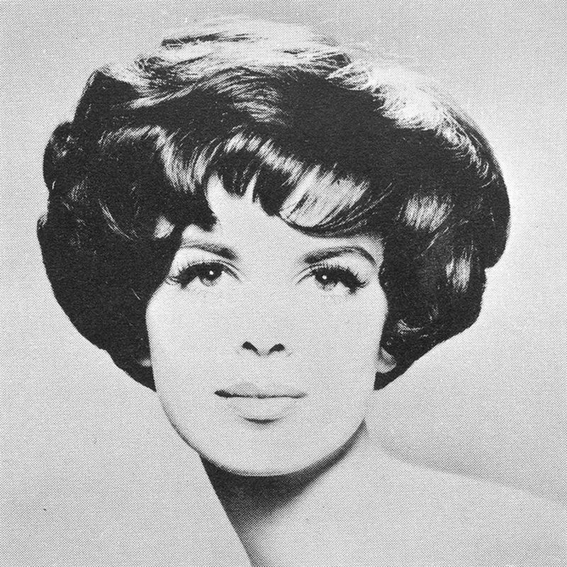 1960s Hairstyle 33