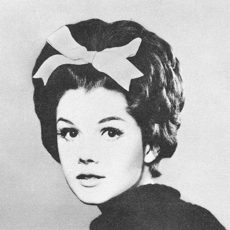 1960s Hairstyle 10