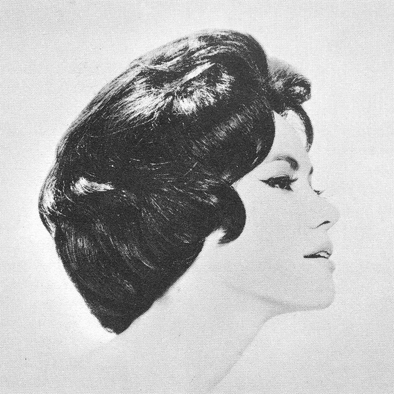 1960s Hairstyle 20