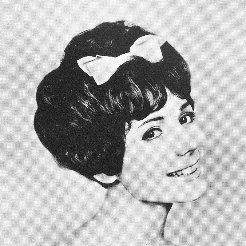 1960s Hairstyle 16