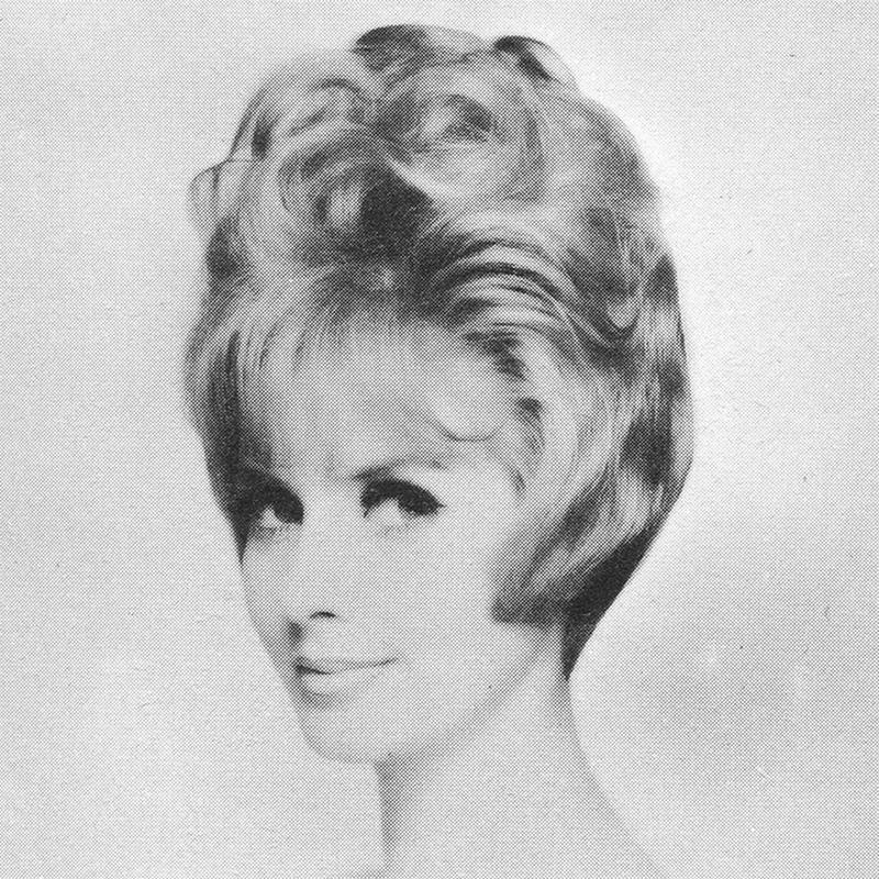 1960s Hairstyle 18
