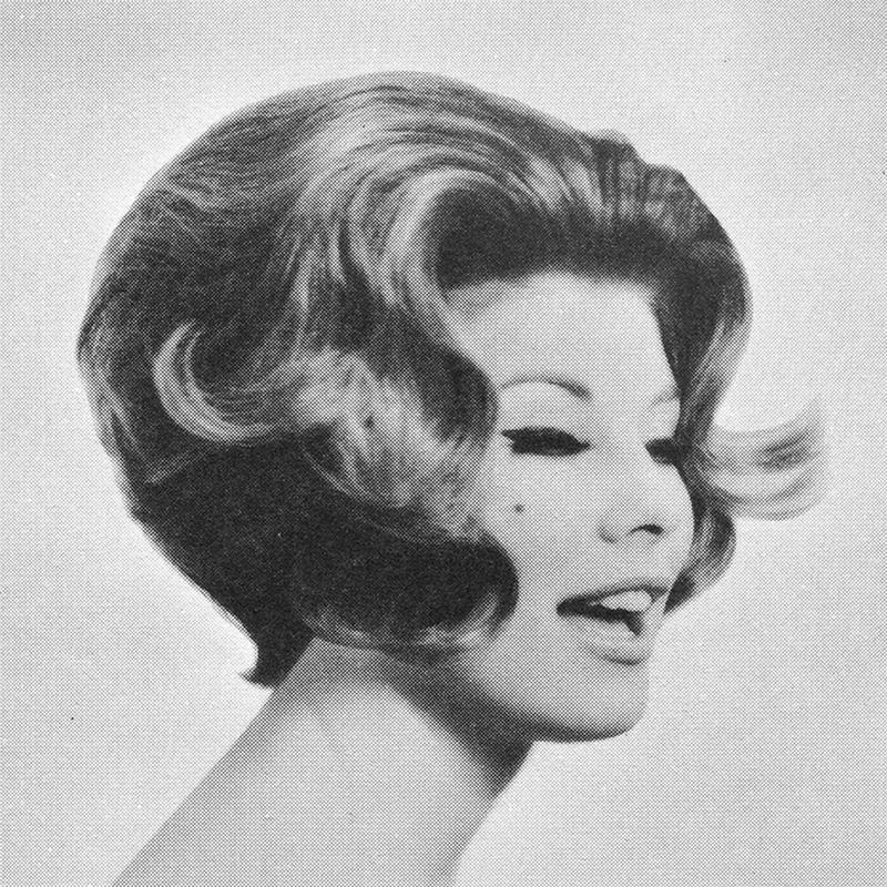 1960s Hairstyle 46
