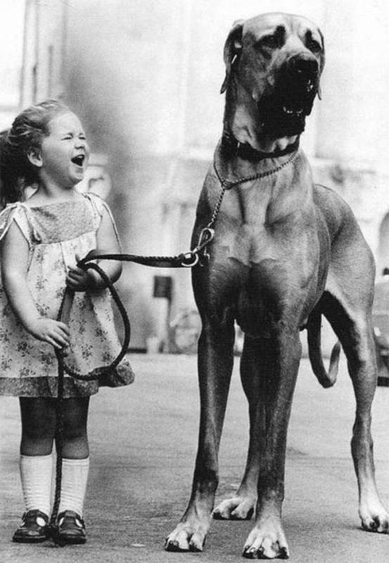 Kids-and-pets-13
