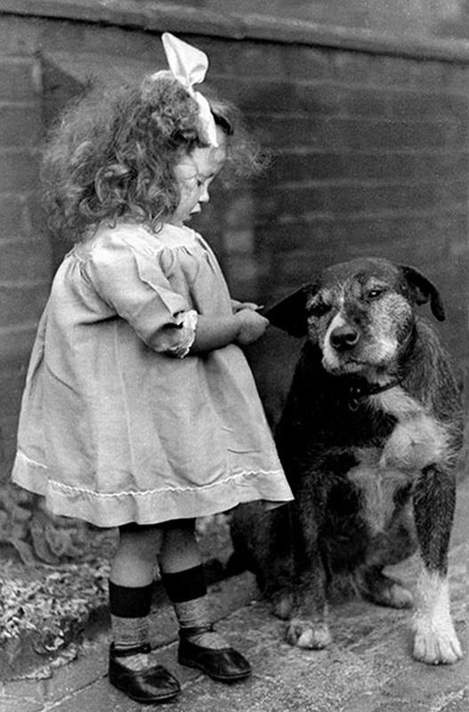 Kids-and-pets-12