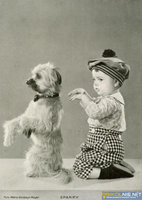 Kids-and-pets-9
