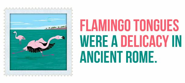 facts about ancient rome - flamingo tongues